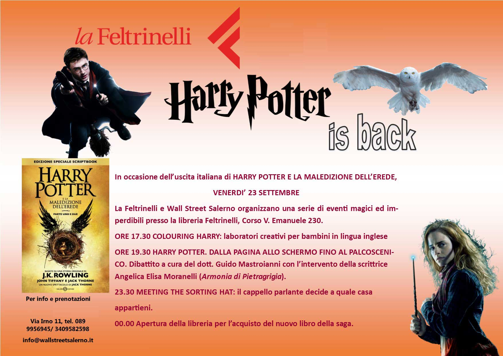 Harry Potter British School International Salerno